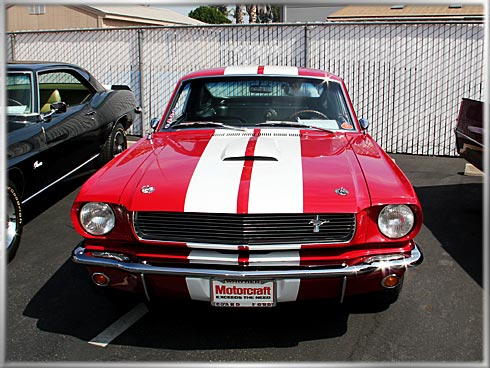 1966-Shelby-GT-350-1