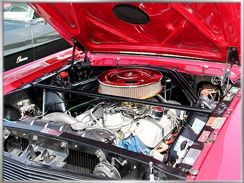 1966-Shelby-GT-350-7